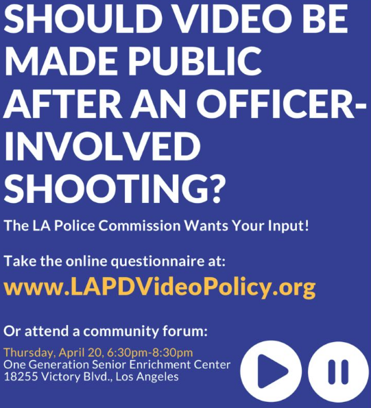 LADP video policy survey