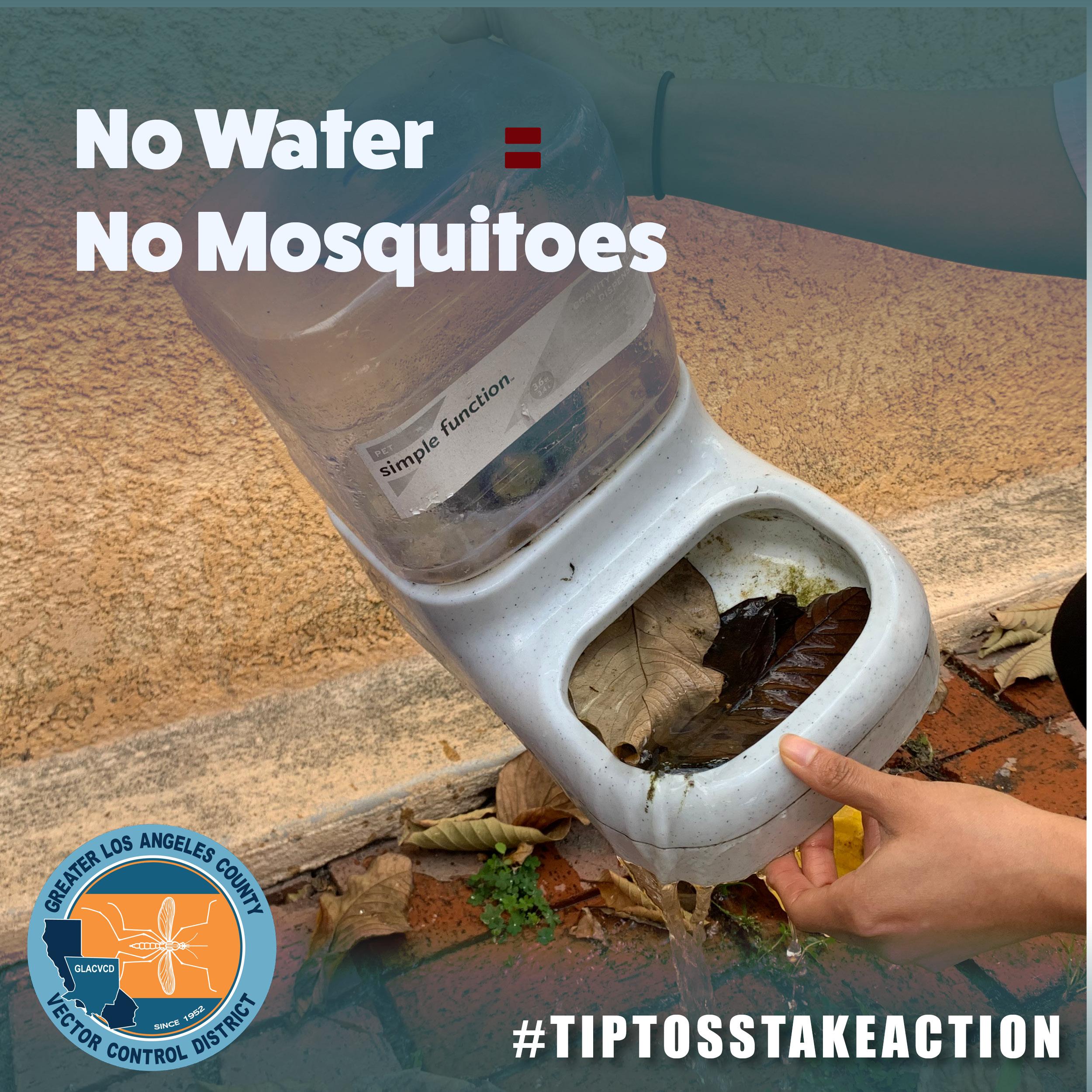 No water, no mosquitoes